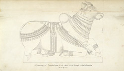 Sculpture of Nandi from a temple at Dracheram (?) 21 July 1815